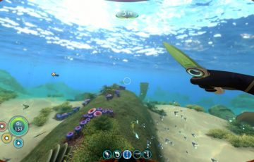 Subnautica_shallow waters